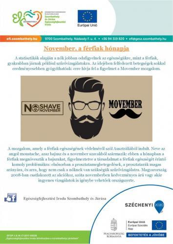 November, a férfiak hónapja-page-001